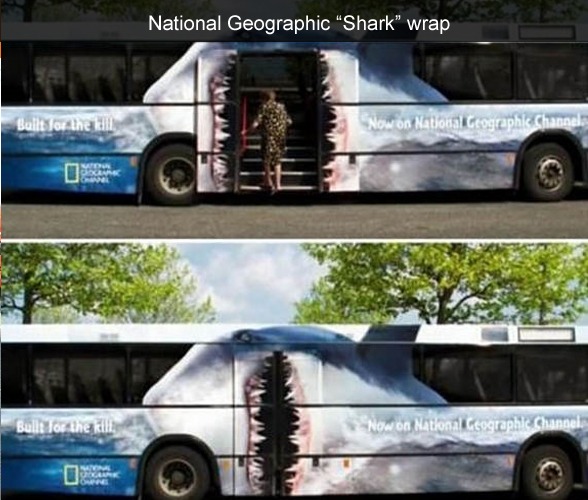 National Geographic Shark Week Wrap
