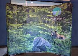 10ft x 8ft Curved Dye-sublimated Backdrop