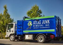 Bin Graphics for Atlas Junk Removal