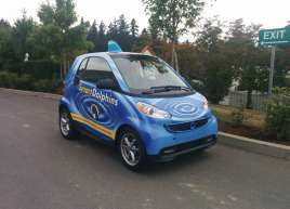 Smart Dolphin Wrap Smart Car