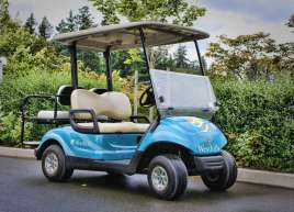 Golf Cart Wrap